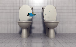 Fish flying between toilets. A view of a blue fish appearing to be flying or jumping between two open toilets or commodes Royalty Free Stock Images