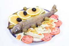 Fish food Stock Photography