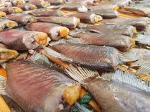 Fish food Stock Photography