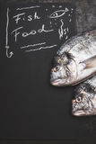 Fish food , handwriting text on black chalkboard background with raw dorado fishes, top view. Copy space Royalty Free Stock Images