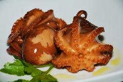 Fish food. Octopus, close up Stock Photos