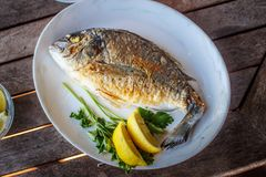 Fish food on white plate with lemon. Royalty Free Stock Image