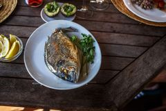 Fish food on white plate with lemon. Stock Photos