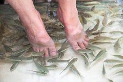 Fish foot massage Royalty Free Stock Photography