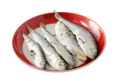 Fish For Cat Stock Photo