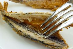 Fish with fork Royalty Free Stock Photography