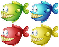 Fish in four different colors Stock Photography