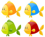 Fish in four different colors. Illustration Royalty Free Stock Image