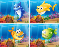 Fish. Four scenes of underwater with fish Stock Photo