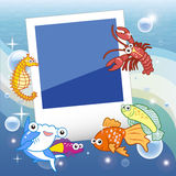 Fish frame. Decorative frame for photo with tropical bright fishes Royalty Free Stock Images