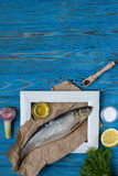 Fish in frame and various spices on blue wooden table. Stock Photos
