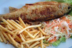 Fish and french fries. With salad royalty free stock image