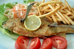 Fish and french fries. With salad Royalty Free Stock Images