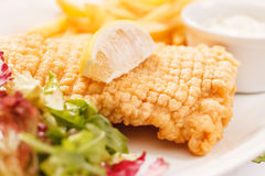 Fish with french fries Royalty Free Stock Photo