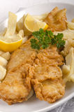 Fish, french and lemon Stock Image