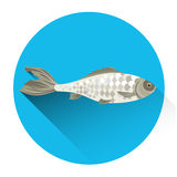 Fish Fresh Food Icon Royalty Free Stock Images