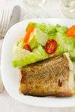 Fish with fresh salad Royalty Free Stock Image
