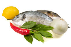 Fish and fresh vegetables. Stock Images