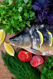 Fish with fresh vegetables and herbs. The fresh fish carp on a wooden background with vegetables and herbs Royalty Free Stock Images