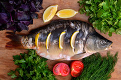Fish with fresh vegetables and herbs. The fresh fish carp on a wooden background with vegetables and herbs Royalty Free Stock Photo