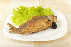 Fish fried carp Stock Photography