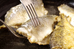 Fish fried in the pan Stock Photo