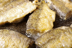 Fish fried in the pan Royalty Free Stock Photography
