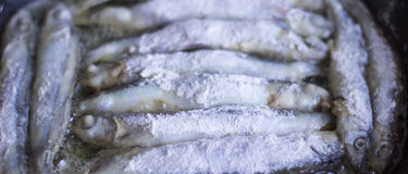 Fish is fried in a pan Stock Photos