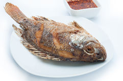 Fish Fried  and pepper sauce. Stock Photography