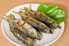 Fish fried in white dish. Royalty Free Stock Image