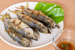 Fish fried in white dish with sauce. Royalty Free Stock Photography