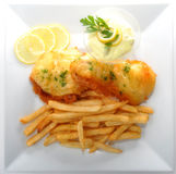 Fish and Fries Royalty Free Stock Images