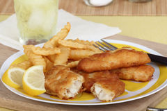 Fish and Fries Royalty Free Stock Photo