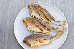 Fish fries Stock Images