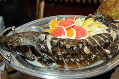 Fish with Fruits Stock Image