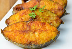 Fish fry. Indian fish fry with spices Royalty Free Stock Photos