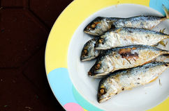 Fish fry. Fish to fry then put it in the dish Stock Photography