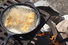Fish frying in a cast iron pan on an outdoor grill Royalty Free Stock Photography