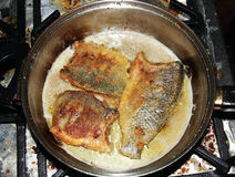 Fish frying in pan Stock Photography