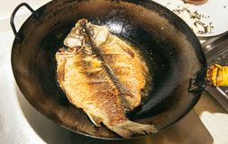 Free Fish Frying Techniques Royalty Free Stock Photography - 166364287