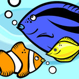 Fish graphic vector. Set of fish graphics vector Royalty Free Stock Photography