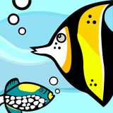 Fish graphic vector. Set of fish graphics vector Royalty Free Stock Images