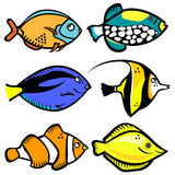 Fish graphic vector. Set of fish graphics vector Stock Photo