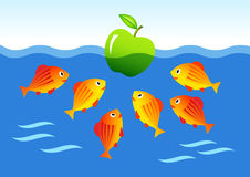 Fish with green apple. Orange fish with green apple Royalty Free Stock Photos