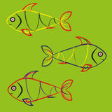 Fish on a green background. Image of three color fish on a green background abstract fish Stock Images