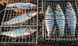 Fish on a grill Royalty Free Stock Photos