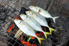 Fish grill Stock Photography