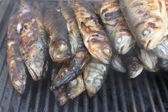 Trouts on the grill. Browned and baked Stock Image