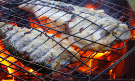 Fish on the grill. Royalty Free Stock Image