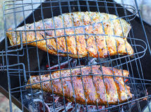 Fish on the grill. Stock Images